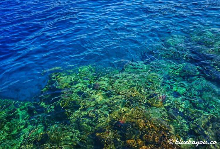 Fotoparade Wasser: Das rote Meer in Ägypten.
