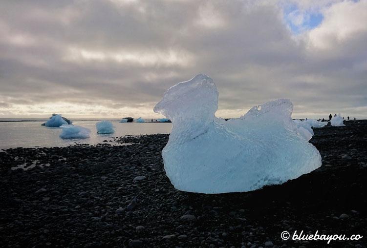 Fotoparade Rätsel: Welches Tier wird hier durch Eis am schwarzen Strand Islands geformt?