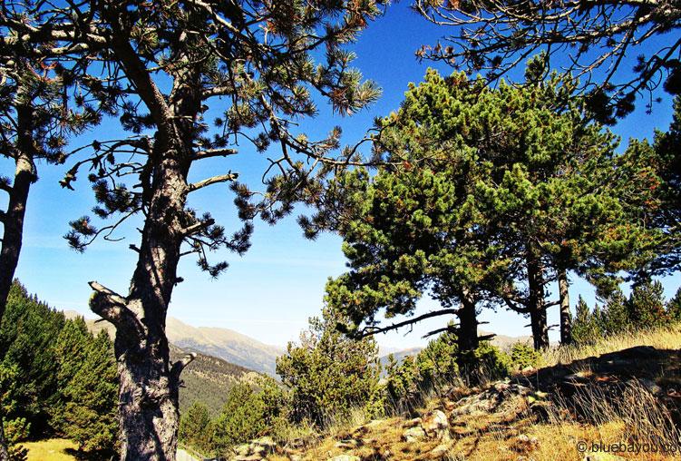 Auf dem höchsten Punkt des Collada de la Gallina hat man diesen Ausblick über Andorra.