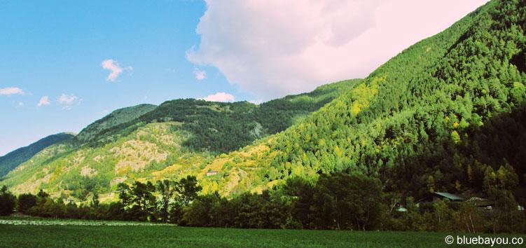 Bewaldete Berge entlang einer Straße von Andorra.