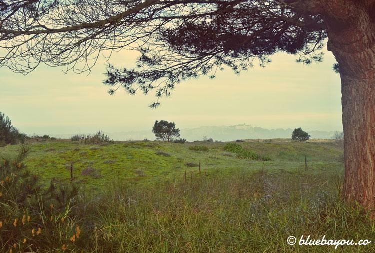Wundervoller Ausblick auf dem Camino del Norte.
