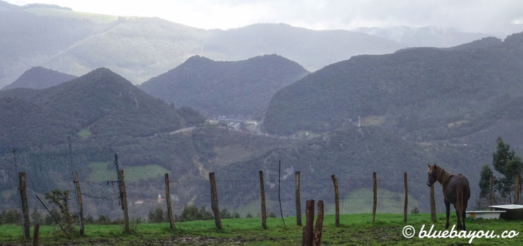 Blick auf Spaniens Berge mit einem Pferd im Vordergrund.
