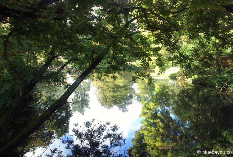 Kategorie Schönstes Foto: Ein See im Bürgerpark Braunschweig im Sommer.