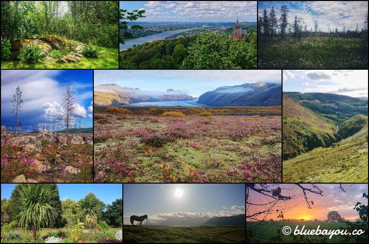 Fotoparade 2020: Collage zum Thema Natur & Landschaft