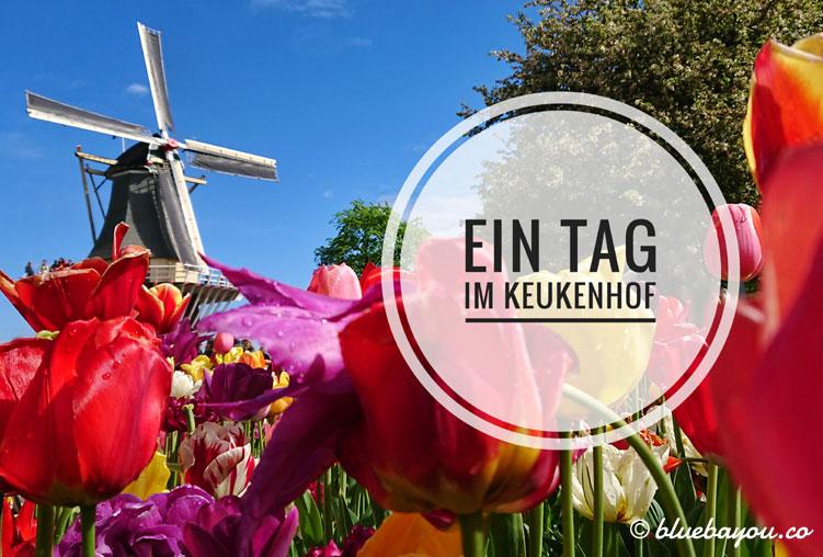 Ein Tag im Keukenhof: lohnt sich der Besuch im Blumenpark?
