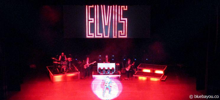 Elvis Presley on Stage.