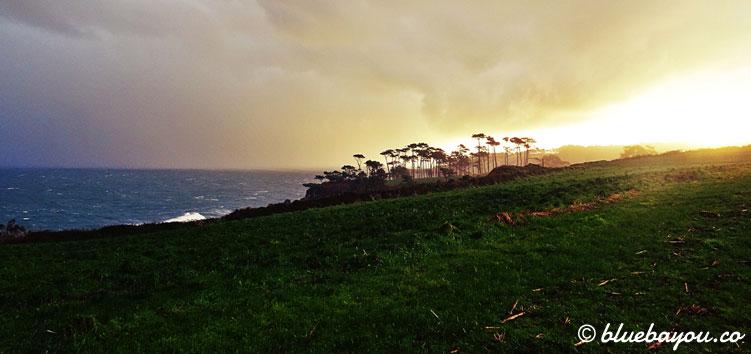 Fernblick auf das Meer entlang des Jakobswegs.