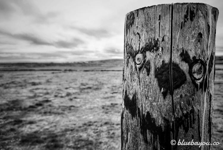 Fotoparade: Ein schwarz-weißes Grinsen in Irland entlang des Wild Atlantic Way.