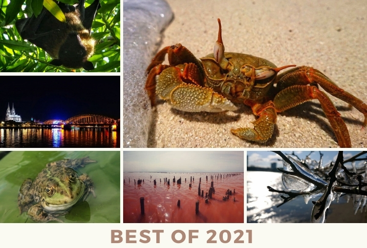 Best of Reisefotos 2021!