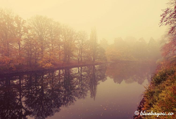 Fotoparade Morgens: Nebel und eine fantastische Spiegelung im Park Slottsträdgården im schwedischen Malmö.