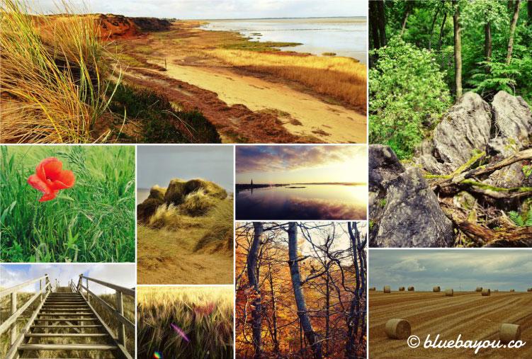 Fotoparade Collage Natur: Mix des zweiten Reisehalbjahres 2017 mit Sylt, Sachsen, NRW und Schleswig-Holstein.