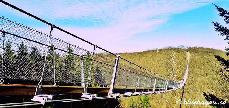 Kategorie Fern: Die Geierlay-Hängeseilbrücke ist die längste ihrer Art in Deutschland.
