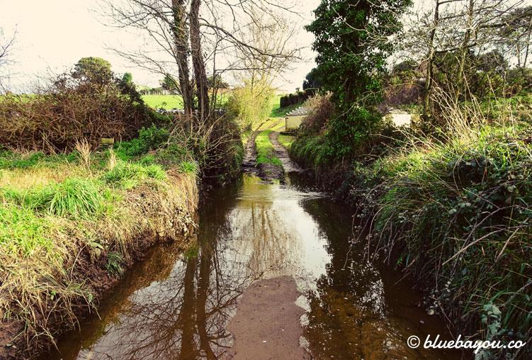Diesen Weg kann ich aufgrund der Überflutung nicht passieren und muss auf eine Wiese ausweichen.
