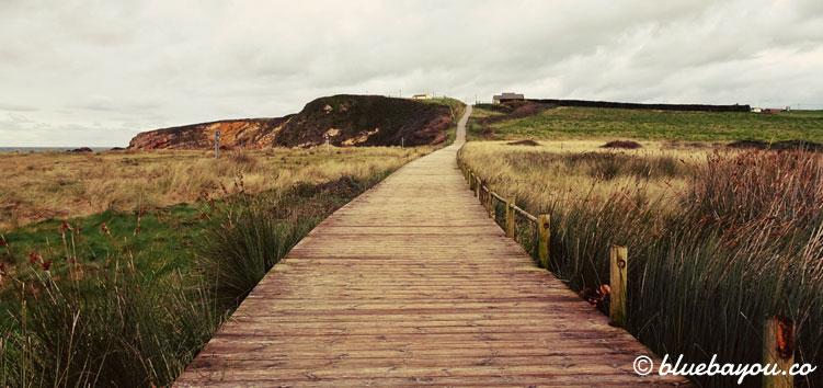 Alleine auf dem Jakobsweg in Spanien entlang der Küste.