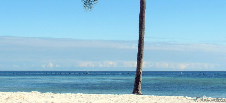 Kleiner Traumstrand auf Key West mit gratis Parkplätzen