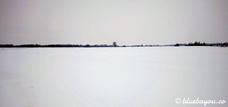Schneelandschaft in Litauen: weiß in weiß.