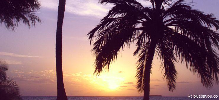 Urlaub auf den Malediven: Entspannung kommt hier wirklich nicht zu kurz.