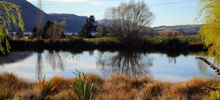 Ein kleiner See auf der Südinsel Neuseelands.