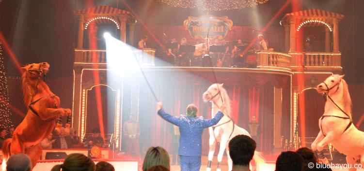 Pferde gehören laut Patrick Philadelphia zu jedem Zirkus und so auch zu Roncalli.