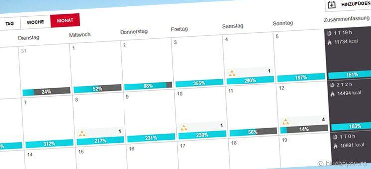 Das Polar Loop Activity Tracker Tagebuch mit dem Überblick über die eigene Leistung.