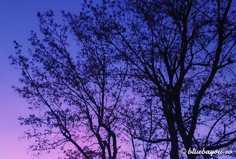Wunderschöne Sonnenuntergänge gab es während des Stillstands.