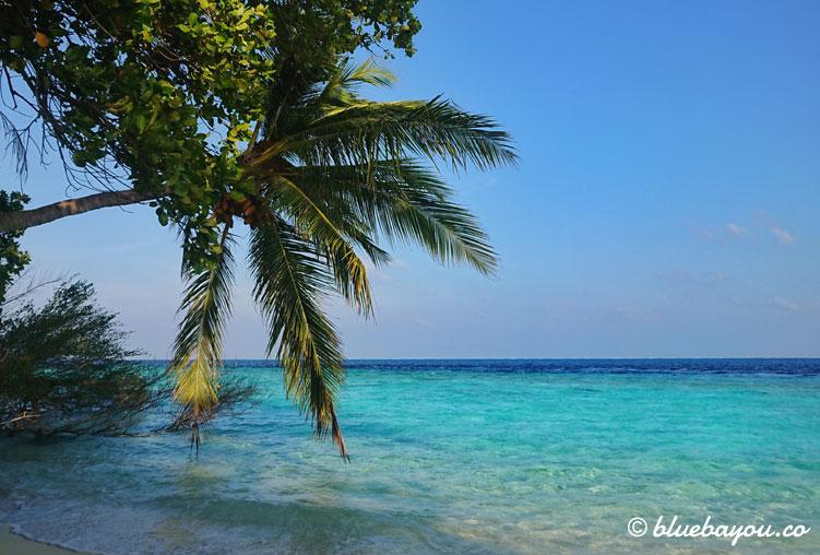 Leerer Strand auf den Malediven - obwohl die Insel fast ausgebucht ist, begegnet man fast nur im Restaurant den anderen Gästen.