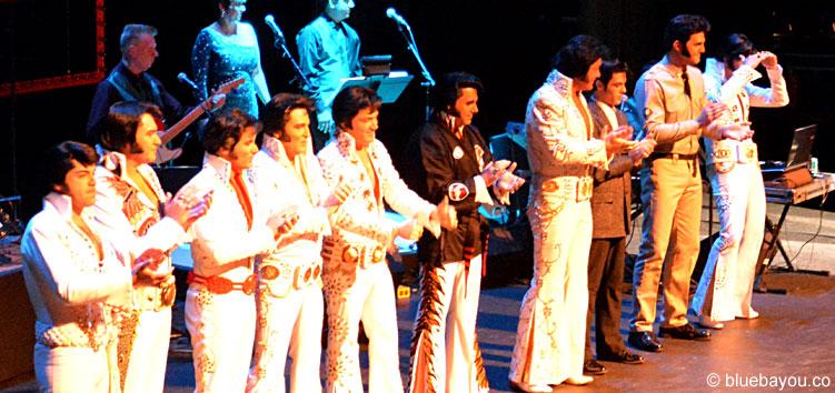 Die Top 10 Finalisten des Ultimative Elvis Tribute Artist Contest 2015.