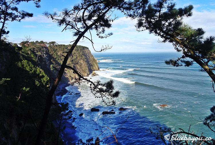 Traumhafter Ausblick auf die Atlantikküste, von einem verlassenen Wald aus.